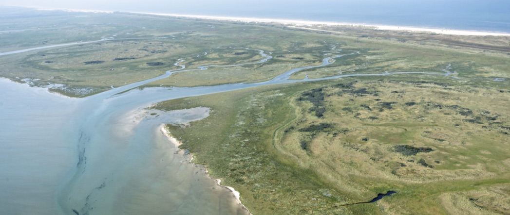 ECOPOTENTIAL General Assembly – Texel  (The Netherlands) June 27th-30th 2016